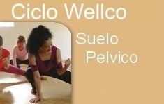 Curso Suelo Pelvico wellco