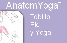 tobillo pie yoga