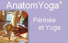 périnee yoga